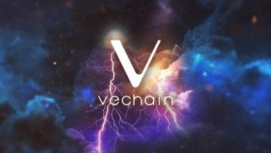 كيف تمكنت VeChain من تتبع العملات المسروقة وتجميد ما قيمته 6.1 مليون دولار