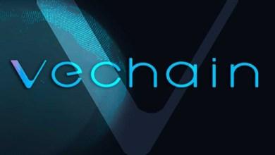 شركة VeChain تطلق تطبيقا لمتابعة بيانات اختبار فيروس كورونا
