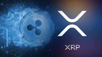 لماذا لم ترتفع عملة الريبل XRP ؟ جولة حول أرقام وبيانات الريبل