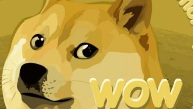 """ارتفاع عملة Dogecoin بنسبة 20 في المائة بسبب فيديو في """"تيك توك"""""""