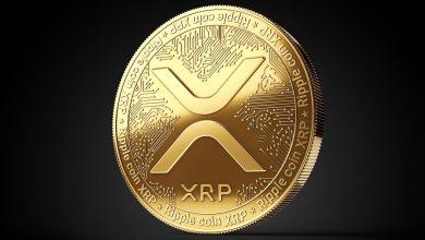 إليك قائمة بمنصات الكريبتو التي أوقفت دعم العملة الرقمية XRP بعد الدعوى القضائية من SEC