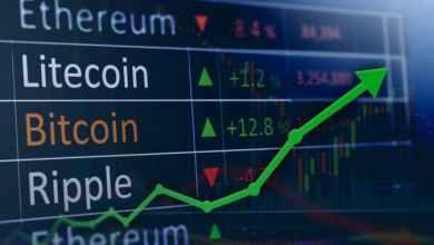 تعرف على أبرز العملات الرقمية الكبيرة التي حققت قمم جديدة في الصعود الأخير