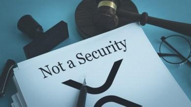 ظهور تفاصيل جديدة في قضية الريبل مع هيئة SEC بعد الجلسة الأولى