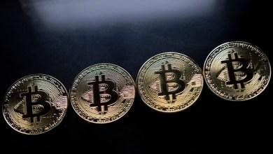 مؤسس كاردانو: البيتكوين BTC سيموت في اللحظة التي تنجح فيها العملات البديلة