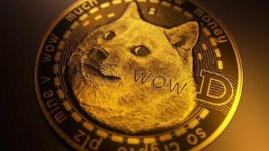 """""""مايكل سايلور"""" ناصحا: ليس من الحكمة ترك عملة """"Dogecoin"""" لحفيدك"""