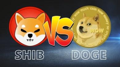 """كيف تختلف العملة الرقمية """"Shiba Inu"""" عن """"Dogecoin""""؟"""