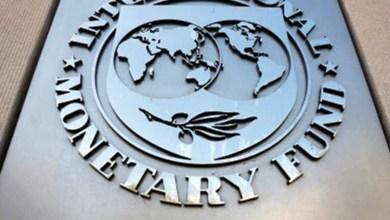 صندوق النقد الدولي: إن اعتماد العملات المشفرة كعملة وطنية محفوف بالمخاطر
