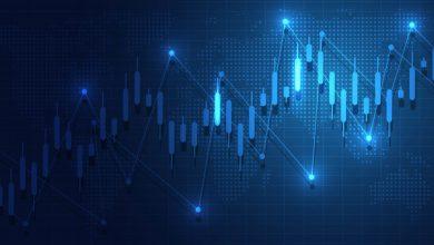 تعرف على...أهم الأسباب التي تساهم في تقلب سوق العملات الرقمية المشفرة