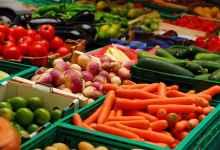 Photo of تعلم الألمانية الكترونيا | مفردات أشهر الخضروات والفواكه