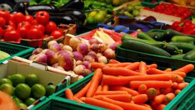 Photo of تعلم الألمانية الكترونيا   مفردات أشهر الخضروات والفواكه