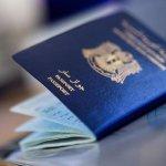 لماذا يتم طلب إحضار جواز السفر السوري في ألمانيا