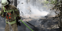حرائق غابات في ولاية ألمانية