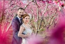 صورة الطلب العالمي على تصوير حفلات الزفاف في اشجار الخوخ المزهرة في ايماثيا