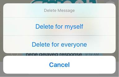 viber mistake messages