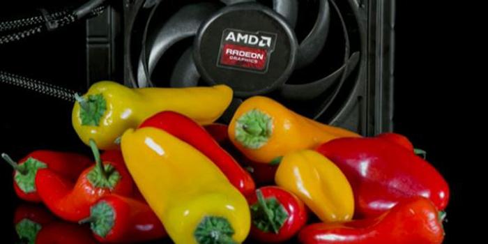 Radeon Pro Duo-10