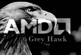 معالجات AMD Grey Hawk APU