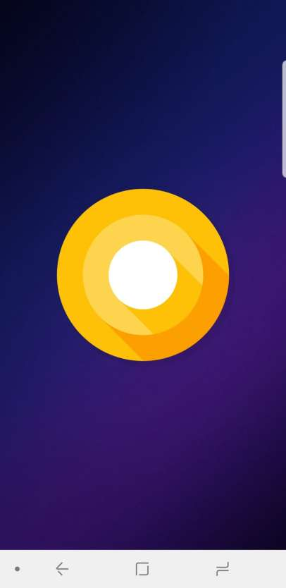 Samsung Galaxy S9 Display os Android Ore 8.0