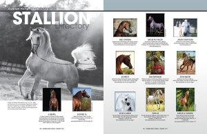 2017 Stallion Directory