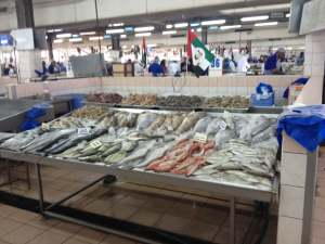 Mina Port Fish Market