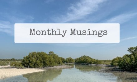 Monthly Musings: February 2020