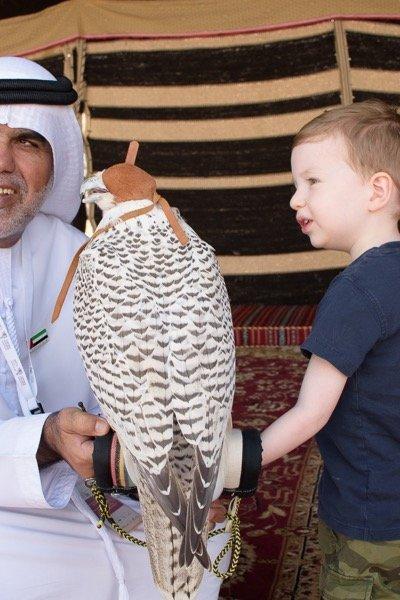 Khalifa Park Abu Dhabi Arabian Notes 2018-21