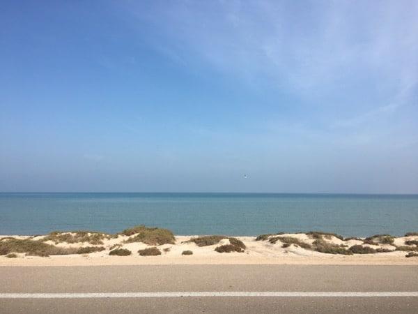 sir-baniyas-island-arabian-notes-oct-2016-21
