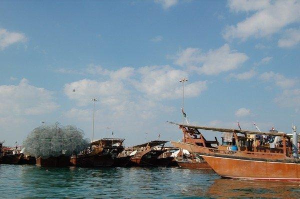 The Yellow Boats Abu Dhabi Dec 2015 Arabian Notes 13