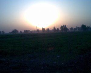 Shanrah Al Bahreyah, close to Tanta, Egypt
