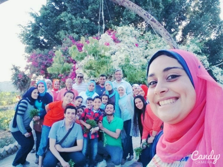 rsz_farm-at-ad-dilinjat-buheira-egypt-1024x768