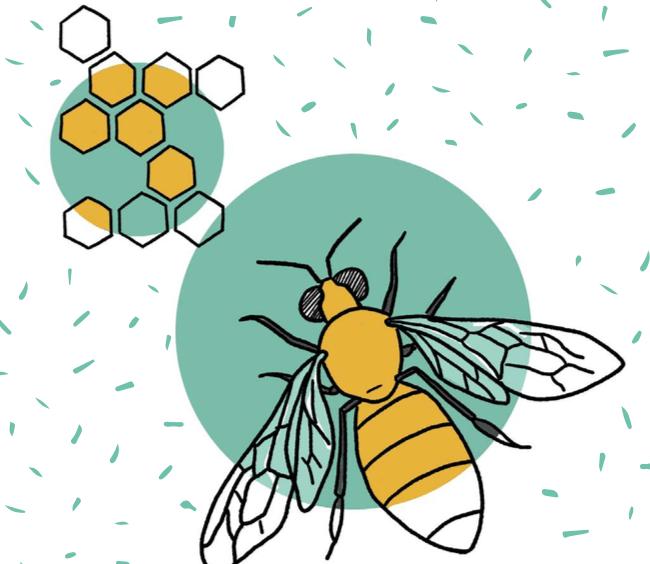 نظرة على عالم النحل | الزراعة العضوية المستدامة