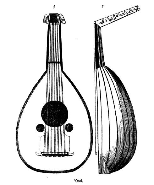 رسم ادوارد لين للعود المتوسط