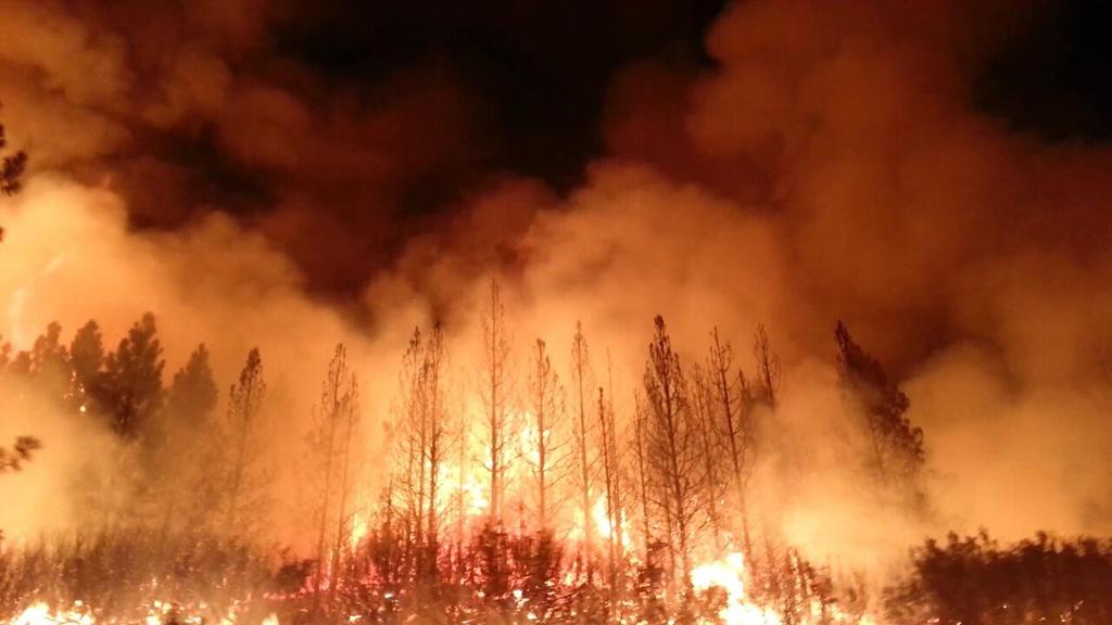 حرائق الغابات تتمدد بسرعة في كاليفورنيا