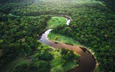 """بيع أراضي غابات الأمازون عبر موقع """"فيسبوك""""!"""