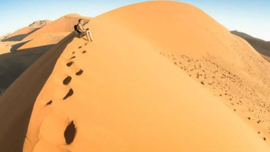 Photo of مصر.. إنقاذ 21 سوريا بعدما تركتهم مافيا البشر بالصحراء