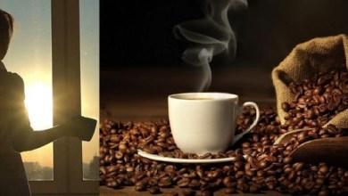 Photo of القهوة في خطر.. والمناخ يتحمل المسؤولية