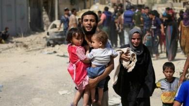 Photo of الأمم المتحدة: 5.4 مليون نازح عراقي منذ سيطرة داعش