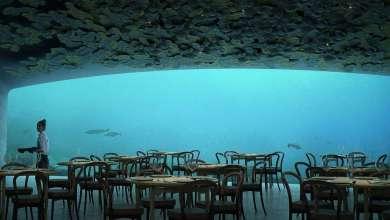 Photo of أول مطعم تحت الماء في أوروبا يفتتح 2018