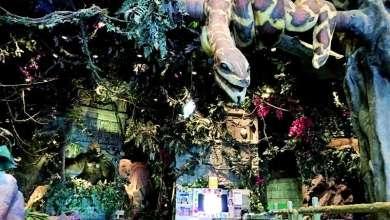 Photo of غابة أمازونية لتناول أشهى الوجبات بدبي