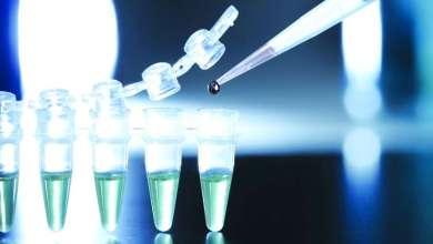 Photo of الخلايا الجذعية المعدلة أمل جديد لمرضى الشلل الرعاش