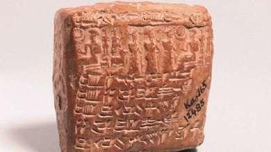 Photo of العثور على أول تشخيص للعقم في عقد زواج عمره 4 آلاف عام