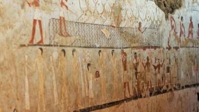 Photo of لماذا خلد المصريون القدماء القرود في آثارهم؟