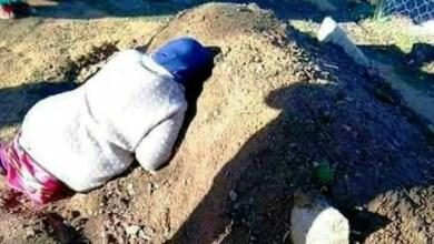 Photo of صورة مؤثرة أبكت الجزائريين