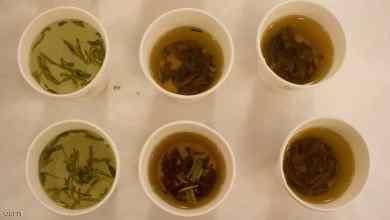 """Photo of تجربة علمية تكشف """"فائدة مذهلة"""" للشاي الأخضر"""