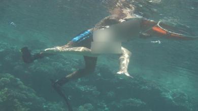 Photo of مصر.. توقيف المدرب الذي تحرش بسائحة تحت الماء