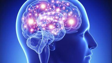 Photo of مخ الإنسان يئن لهذا السبب