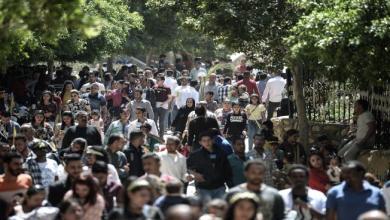 Photo of المخابرات المصرية توقف العمل بمشروع إحياء مسار العائلة المقدسة
