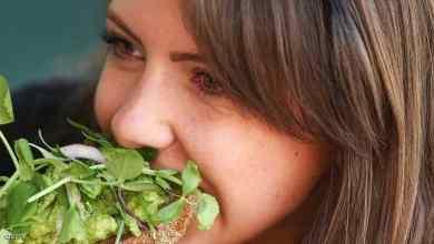 Photo of أكثر المعادن الغذائية يساعد في تلافي أمراض القلب