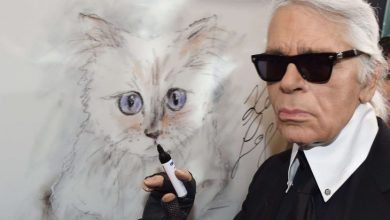 "Photo of قطة تنعي صاحبها مصمم الأزياء على ""إنستغرام"" وترث 150 مليون إسترليني منه"