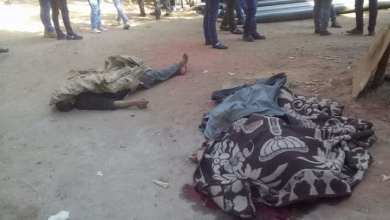 Photo of مذبحة في مصر.. شاب يقتل 7 عشوائيا بالرصاص