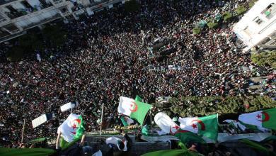 Photo of جزائريون ينتفضون على الإخوان: لا تتدخلوا في شؤوننا